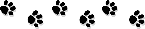 doggy prints