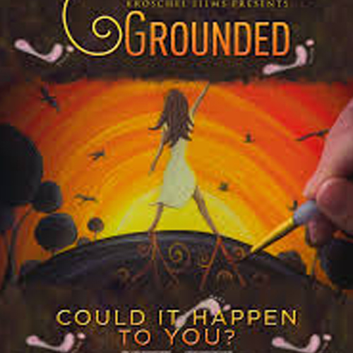 The Grounded DVD