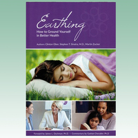Earthing Book - Mini Version